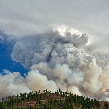 Dr. Erin Landguth interviewed on wildfire smoke research, potential impacts for COVID-19